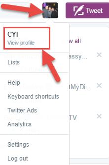 Twitter-Profile-Lien